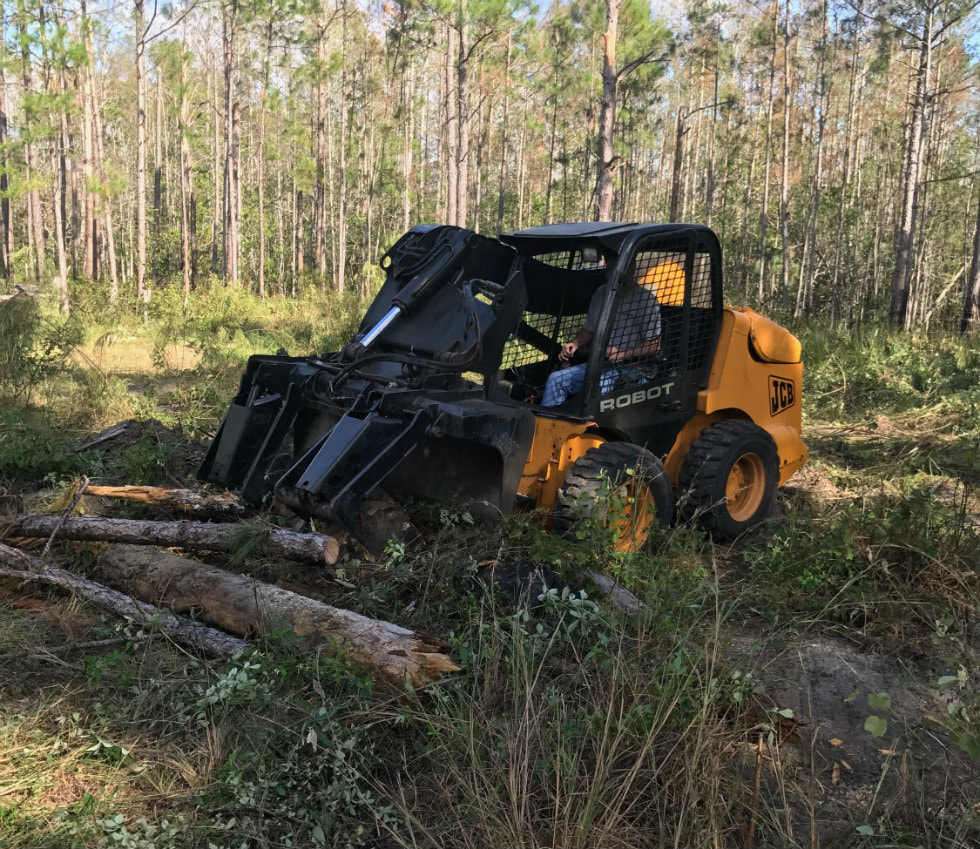 Lakeland FL Land Clearing