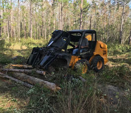 Lakeland Land Clearing
